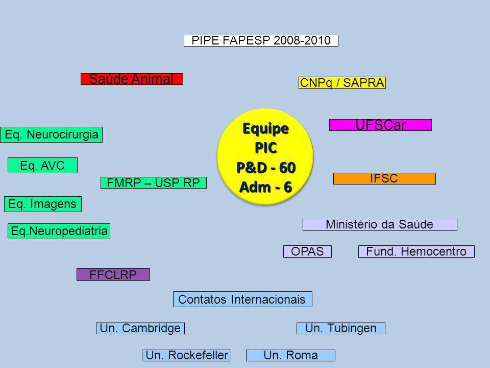 EquipePIC P&D - 60 Adm - 6 PIPE FAPESP 2008-2010 Fund.