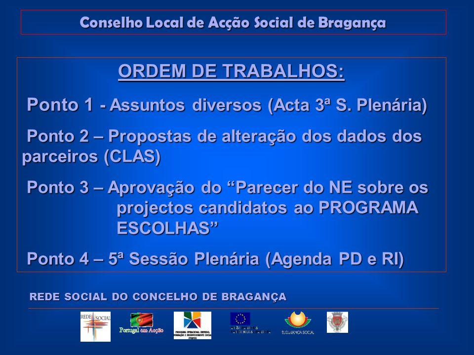 Conselho Local de Acção Social de Bragança REDE SOCIAL DO CONCELHO DE BRAGANÇA ORDEM DE TRABALHOS: Ponto 1 - Assuntos diversos (Acta 3ª S.