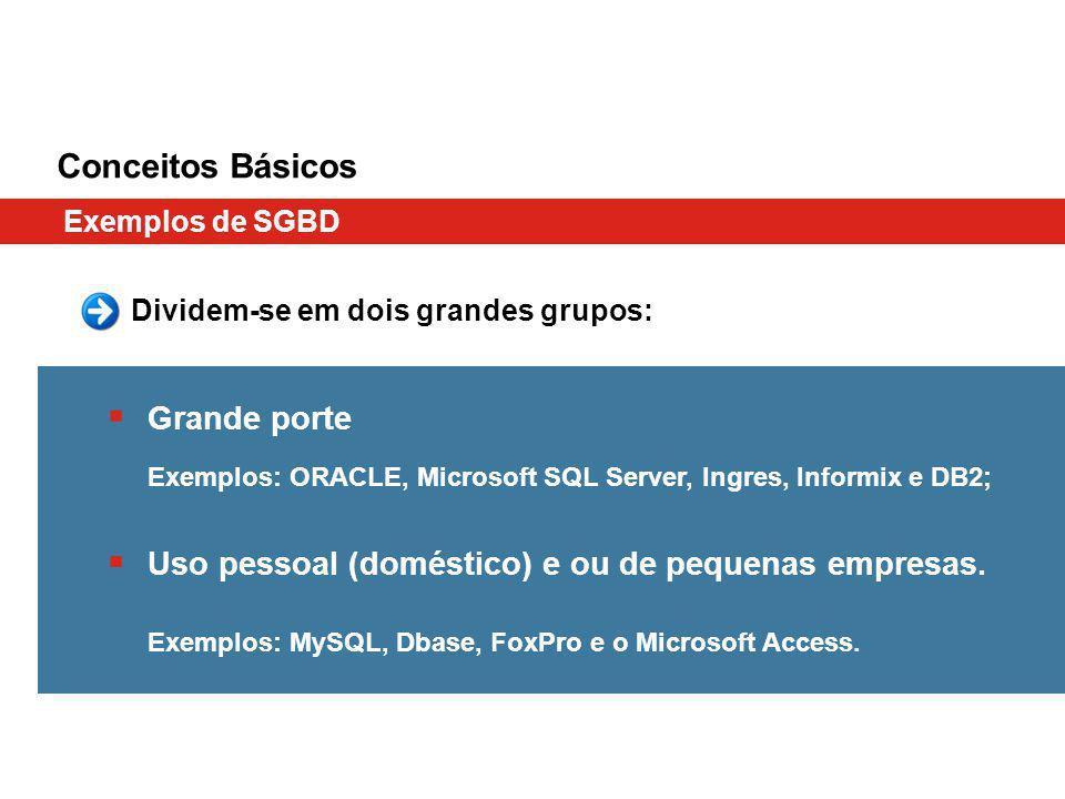 Conceitos Básicos Exemplos de SGBD Dividem-se em dois grandes grupos: Grande porte Exemplos: ORACLE, Microsoft SQL Server, Ingres, Informix e DB2; Uso pessoal (doméstico) e ou de pequenas empresas.