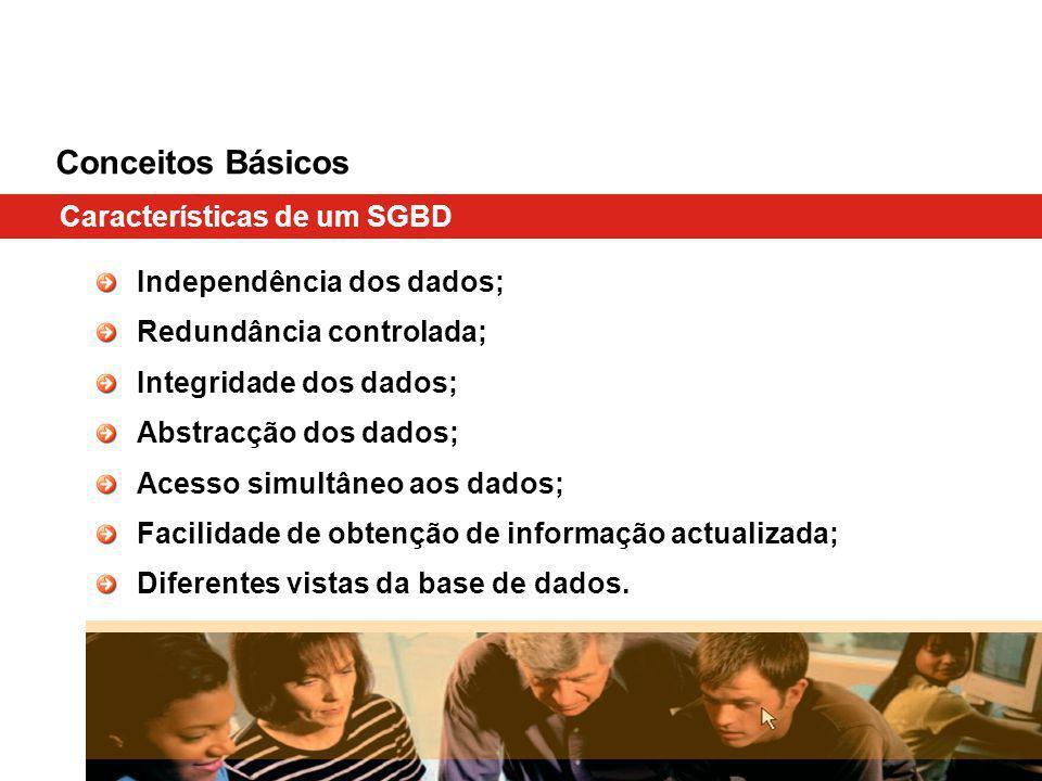 Conceitos Básicos Características de um SGBD Independência dos dados; Redundância controlada; Integridade dos dados; Abstracção dos dados; Acesso simultâneo aos dados; Facilidade de obtenção de informação actualizada; Diferentes vistas da base de dados.