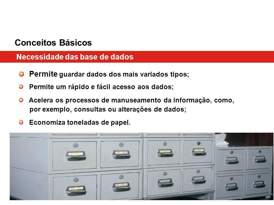 Conceitos Básicos Necessidade das base de dados Permite guardar dados dos mais variados tipos; Permite um rápido e fácil acesso aos dados; Acelera os processos de manuseamento da informação, como, por exemplo, consultas ou alterações de dados; Economiza toneladas de papel.