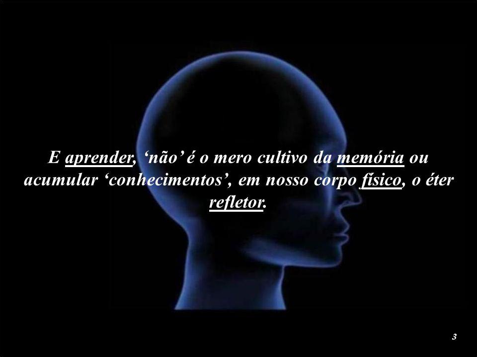 2 A função da mente, é investigar e aprender.