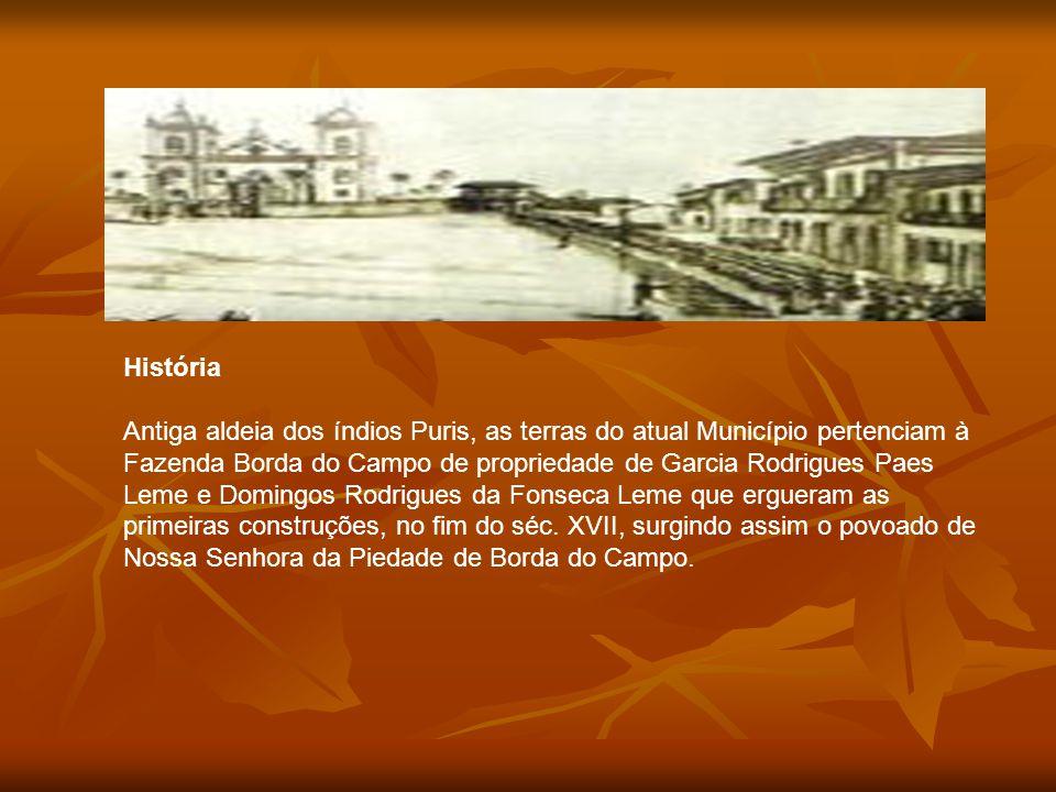 Município cercado pelos Montes Mário e Cruz das Almas, no Planalto da Serra da Mantiqueira, na parte central do Estado, Barbacena é conhecida como a C