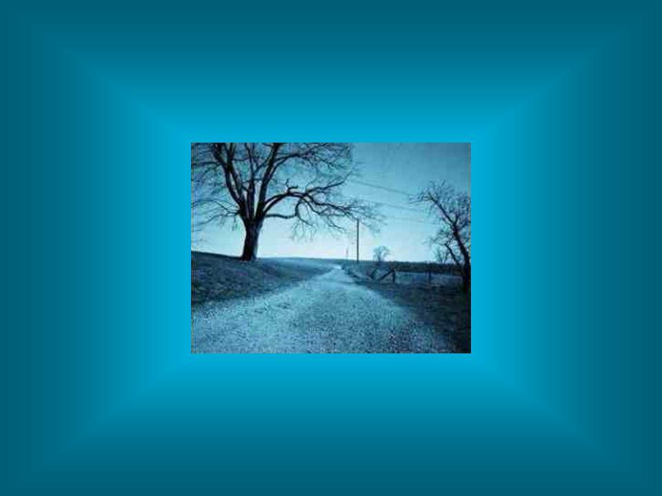 Siga os passos daquele que pode te conduzir para um caminho de paz... Jesus Cristo O autor da Vida.