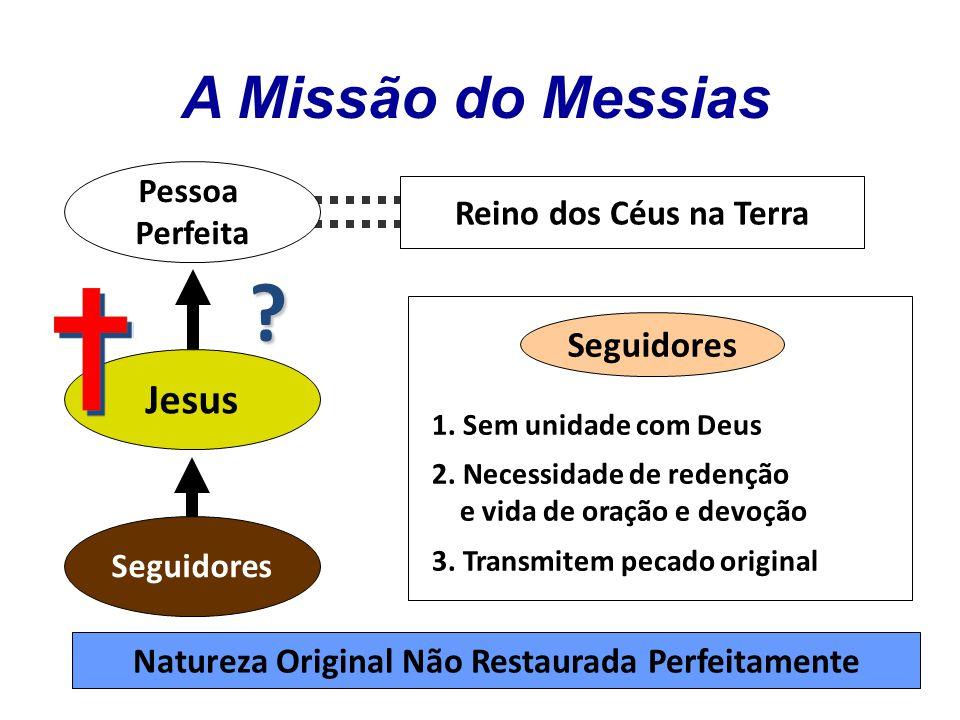 Pessoa Perfeita Jesus Seguidores Reino dos Céus na Terra 1.