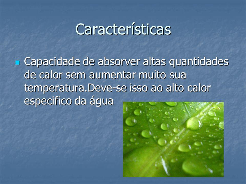 Características Capacidade de absorver altas quantidades de calor sem aumentar muito sua temperatura.Deve-se isso ao alto calor especifico da água Cap