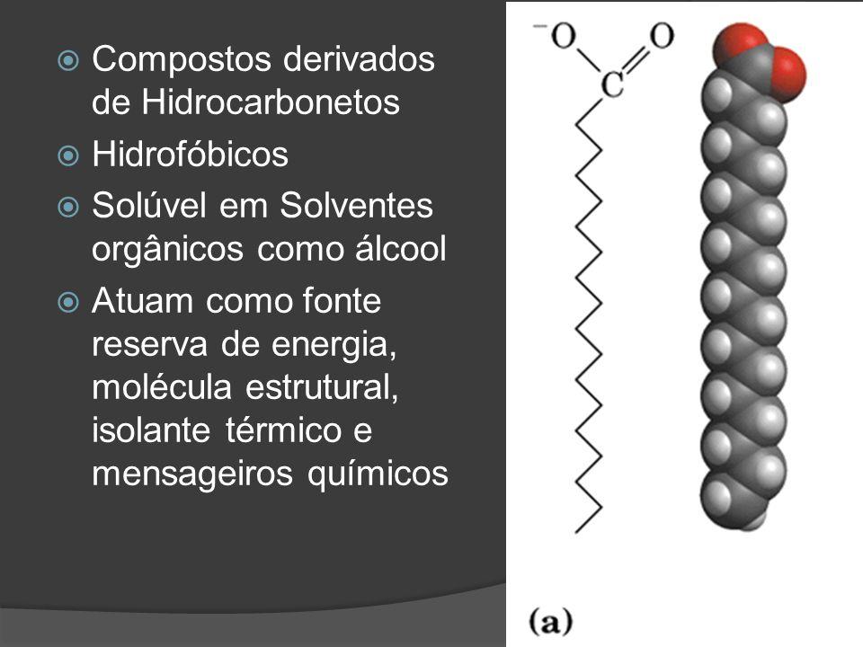 Compostos derivados de Hidrocarbonetos Hidrofóbicos Solúvel em Solventes orgânicos como álcool Atuam como fonte reserva de energia, molécula estrutura