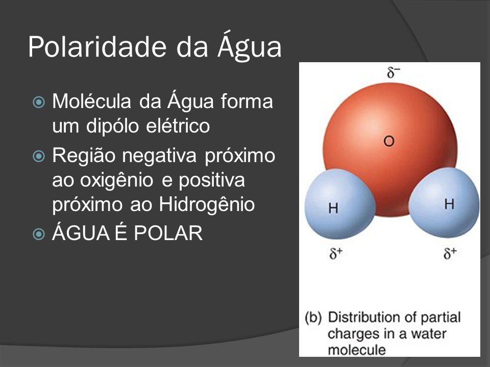 Polaridade da Água Molécula da Água forma um dipólo elétrico Região negativa próximo ao oxigênio e positiva próximo ao Hidrogênio ÁGUA É POLAR