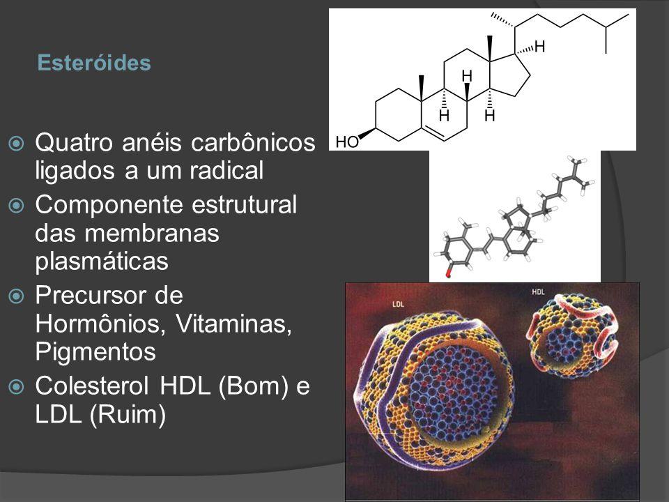 Esteróides Quatro anéis carbônicos ligados a um radical Componente estrutural das membranas plasmáticas Precursor de Hormônios, Vitaminas, Pigmentos C