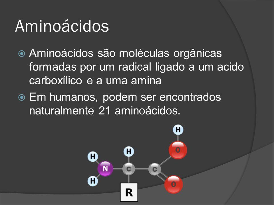 Aminoácidos Aminoácidos são moléculas orgânicas formadas por um radical ligado a um acido carboxílico e a uma amina Em humanos, podem ser encontrados