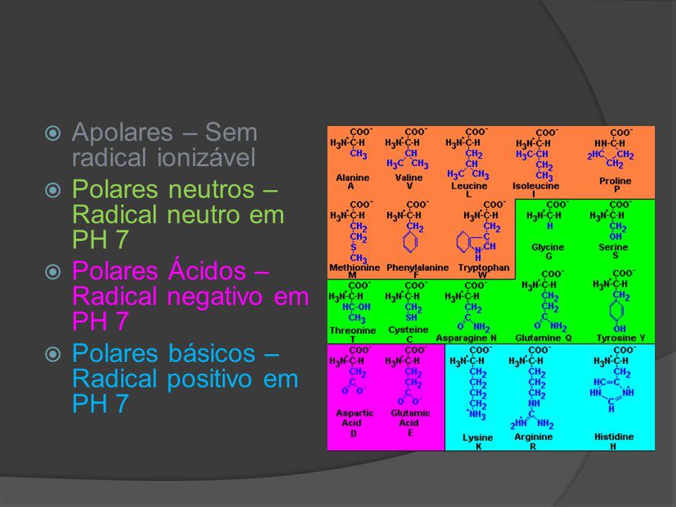 Apolares – Sem radical ionizável Polares neutros – Radical neutro em PH 7 Polares Ácidos – Radical negativo em PH 7 Polares básicos – Radical positivo