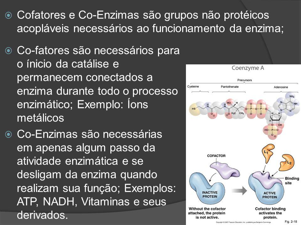 Cofatores e Co-Enzimas são grupos não protéicos acopláveis necessários ao funcionamento da enzima; Co-fatores são necessários para o ínicio da catális