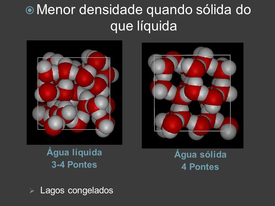 Grande coesão e adesão Alta tensão superficial Moléculas na superfície são puxadas para dentro, ocupando o mínimo espaço possível http://www.youtube.com/watc h?v=VoQ0DQpwwHU