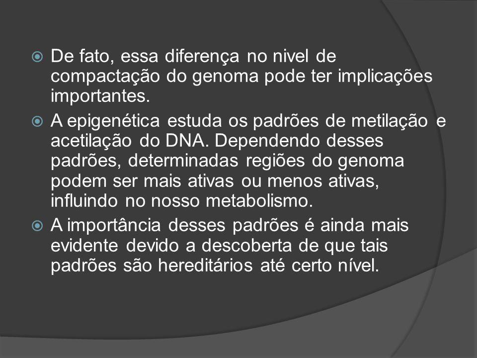 De fato, essa diferença no nivel de compactação do genoma pode ter implicações importantes. A epigenética estuda os padrões de metilação e acetilação