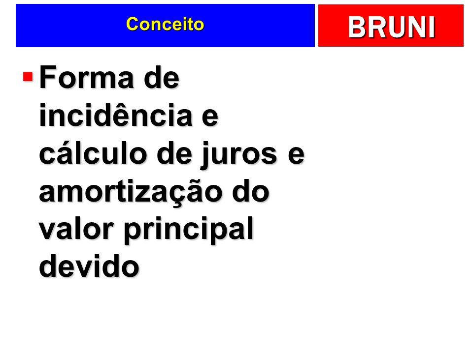 BRUNI Conceito Forma de incidência e cálculo de juros e amortização do valor principal devido Forma de incidência e cálculo de juros e amortização do valor principal devido