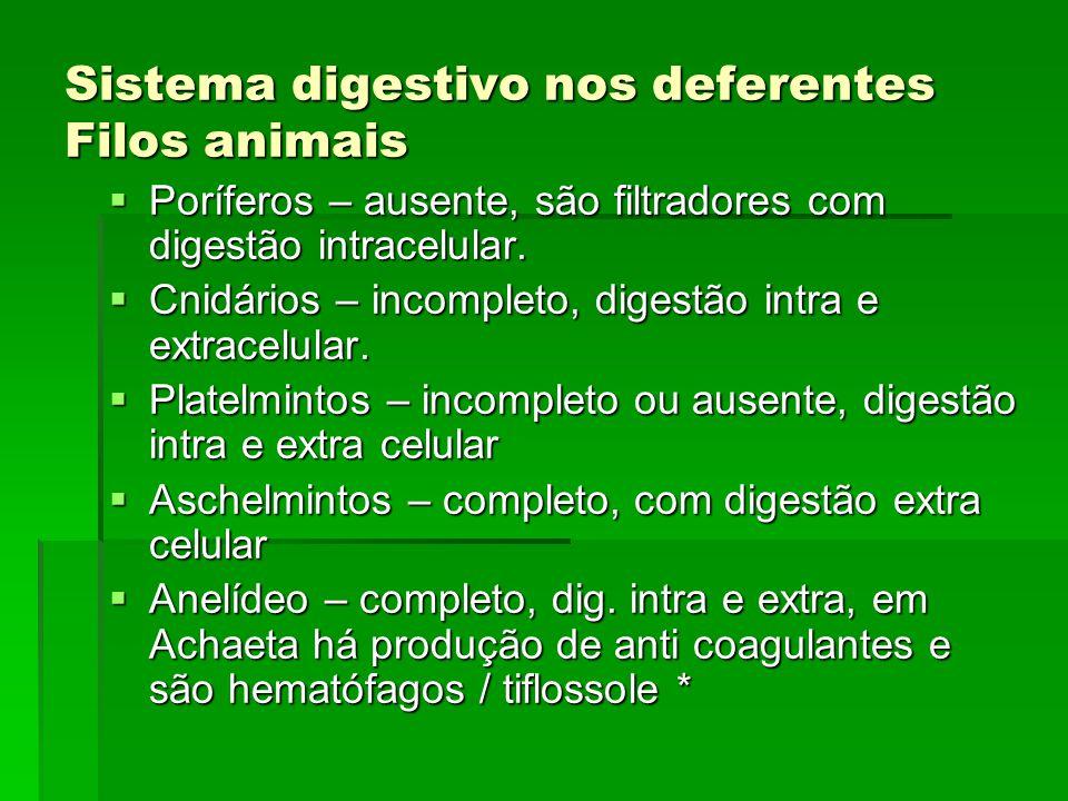 Sistema digestivo nos deferentes Filos animais Poríferos – ausente, são filtradores com digestão intracelular. Poríferos – ausente, são filtradores co