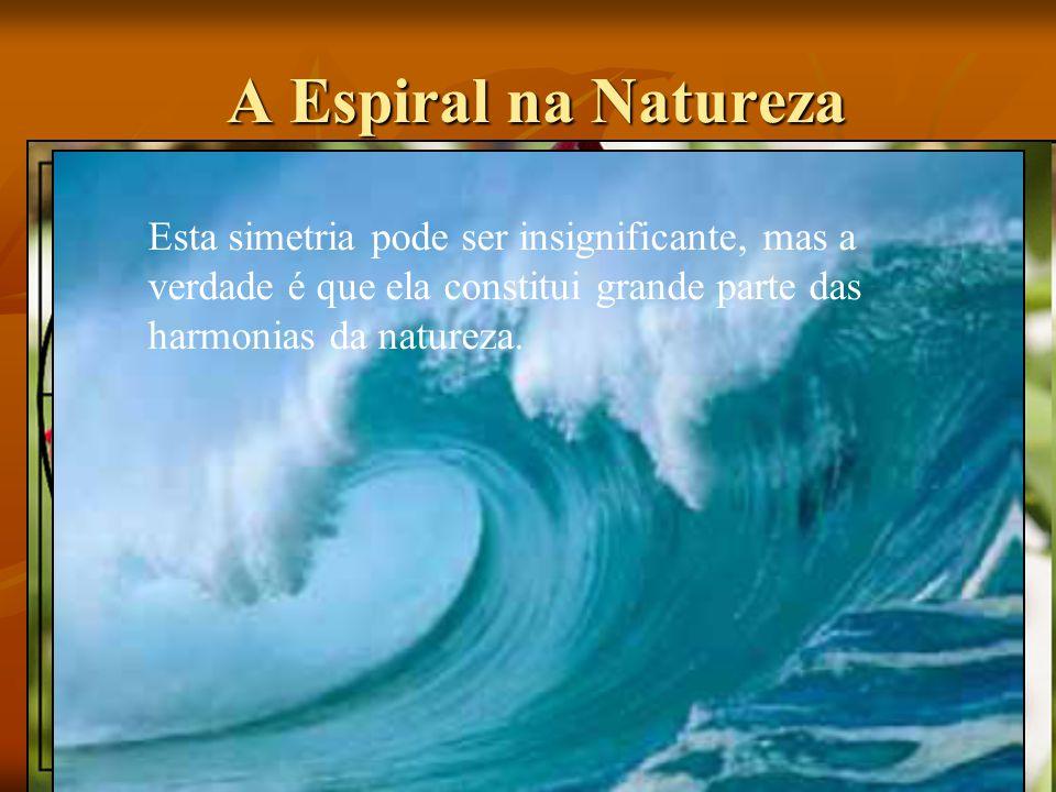 A Espiral na Natureza A Espiral na Natureza Esta simetria pode ser insignificante, mas a verdade é que ela constitui grande parte das harmonias da nat