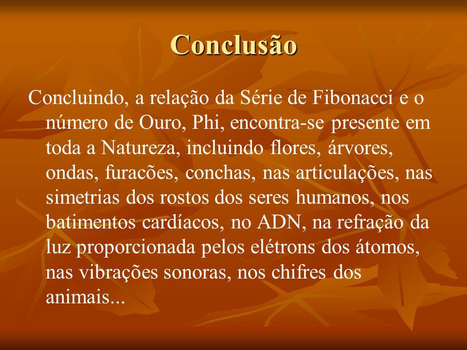Conclusão Concluindo, a relação da Série de Fibonacci e o número de Ouro, Phi, encontra-se presente em toda a Natureza, incluindo flores, árvores, ond