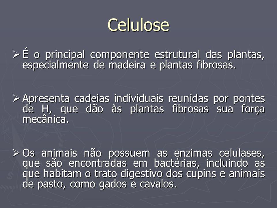 Celulose É o principal componente estrutural das plantas, especialmente de madeira e plantas fibrosas. É o principal componente estrutural das plantas