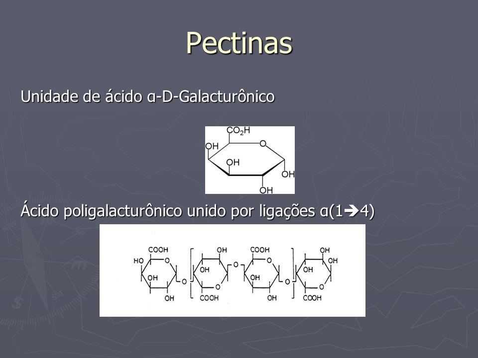 Pectinas Unidade de ácido α-D-Galacturônico Ácido poligalacturônico unido por ligações α(1 4)