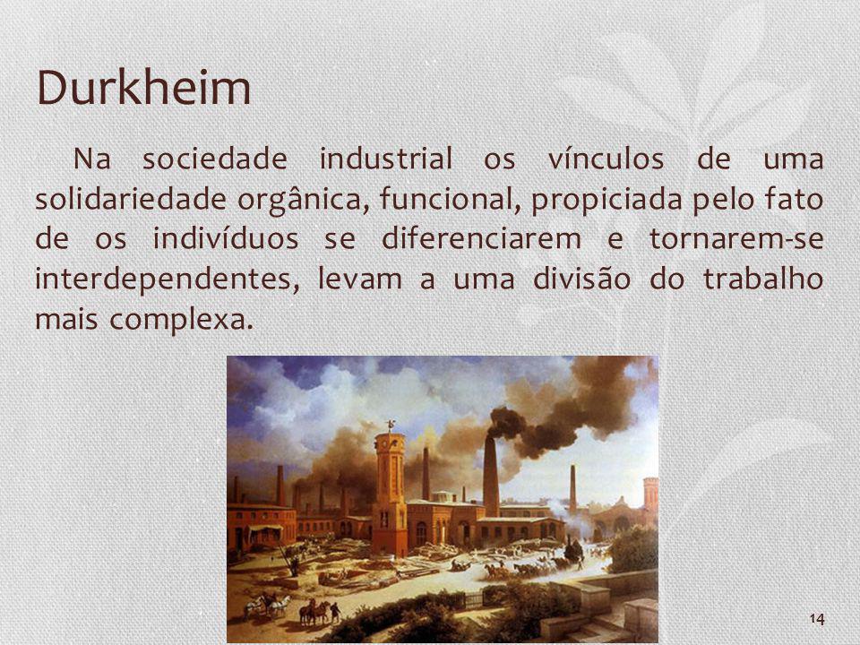 14 Na sociedade industrial os vínculos de uma solidariedade orgânica, funcional, propiciada pelo fato de os indivíduos se diferenciarem e tornarem-se