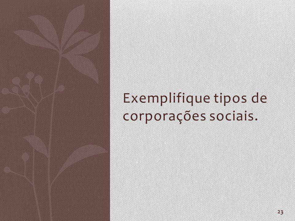 23 Exemplifique tipos de corporações sociais.