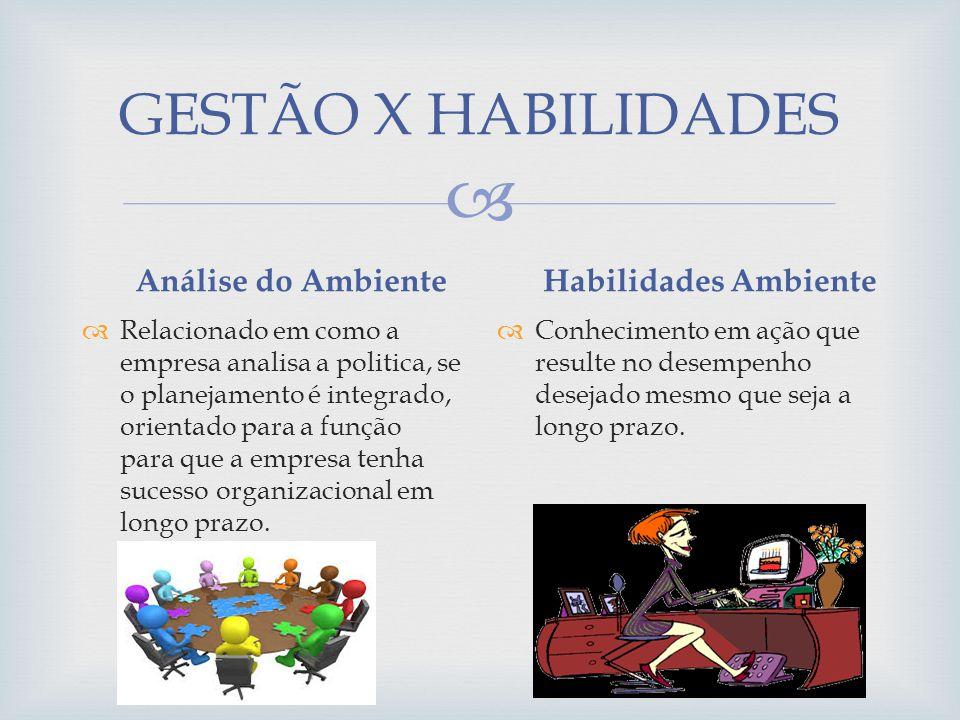 GESTÃO X HABILIDADES Análise do Ambiente Relacionado em como a empresa analisa a politica, se o planejamento é integrado, orientado para a função para