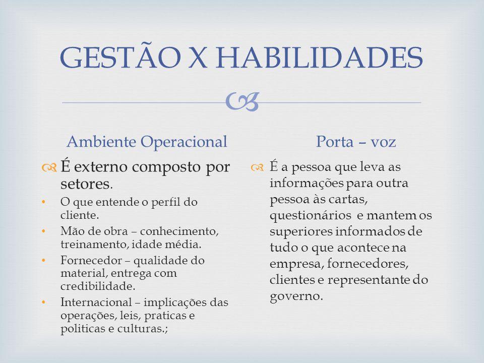 GESTÃO X HABILIDADES Ambiente Operacional É externo composto por setores. O que entende o perfil do cliente. Mão de obra – conhecimento, treinamento,