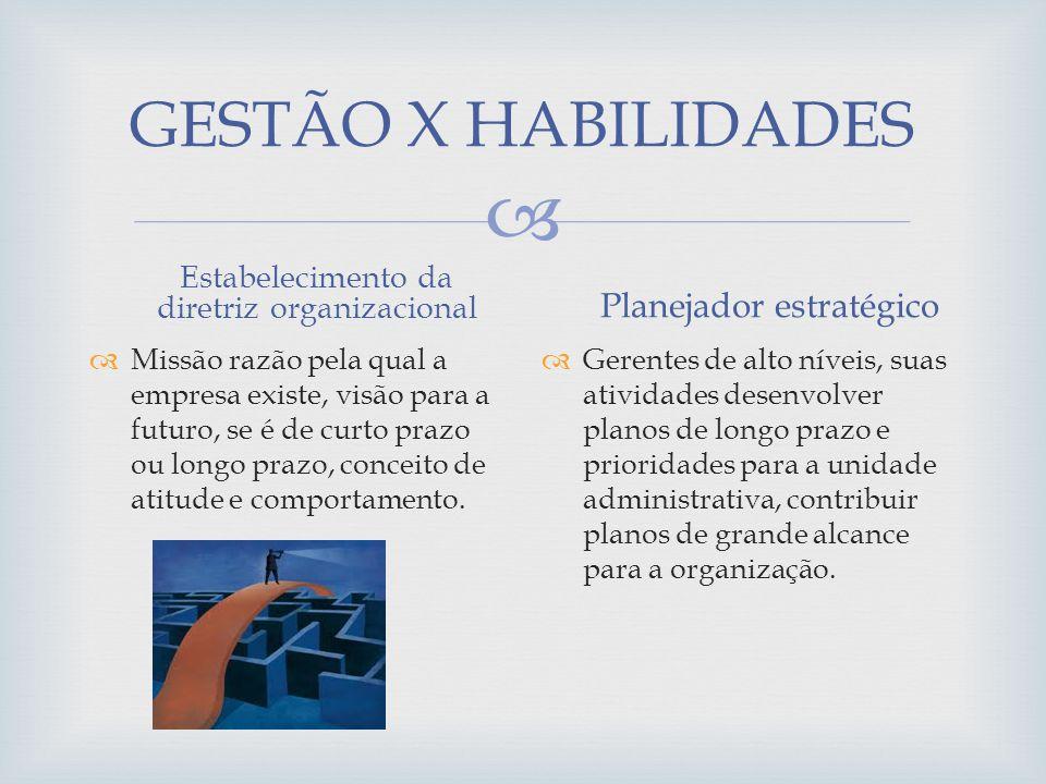 GESTÃO X HABILIDADES Estabelecimento da diretriz organizacional Missão razão pela qual a empresa existe, visão para a futuro, se é de curto prazo ou l