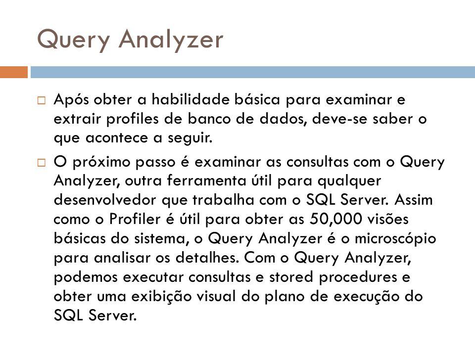 Query Analyzer Após obter a habilidade básica para examinar e extrair profiles de banco de dados, deve-se saber o que acontece a seguir.