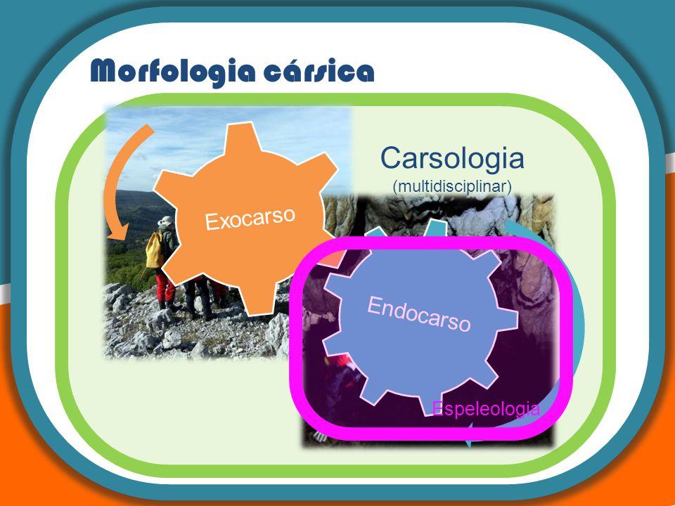 Morfologia cársica Carsologia (multidisciplinar) Endocarso Exocarso Espeleologia