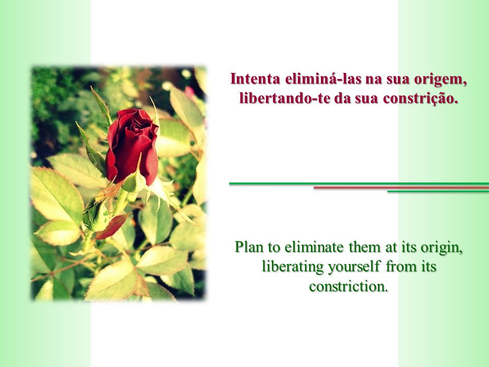 Intenta eliminá-las na sua origem, libertando-te da sua constrição. Plan to eliminate them at its origin, liberating yourself from its constriction.