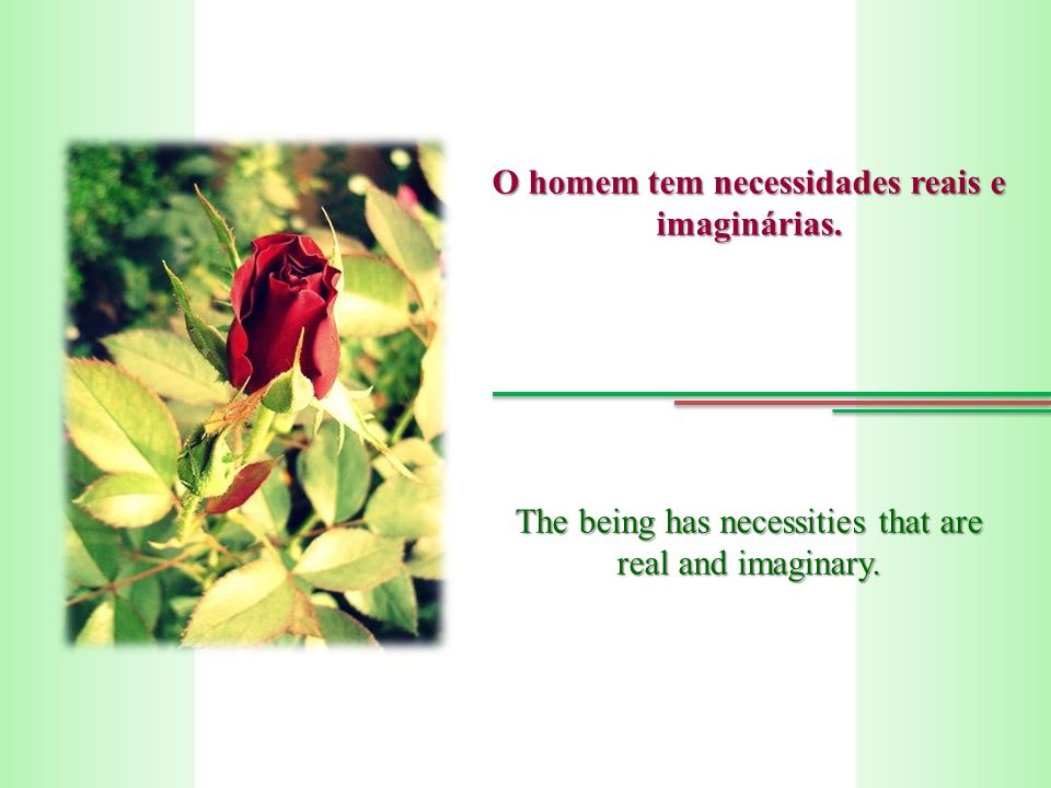 O homem tem necessidades reais e imaginárias. The being has necessities that are real and imaginary.