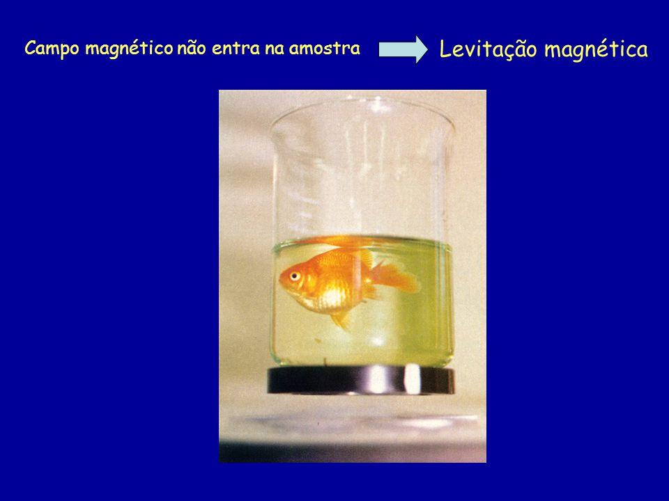 Campo magnético não entra na amostra Levitação magnética