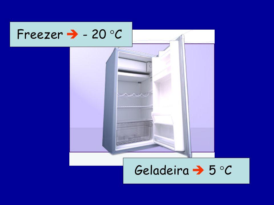 Geladeira 5 C Freezer - 20 C