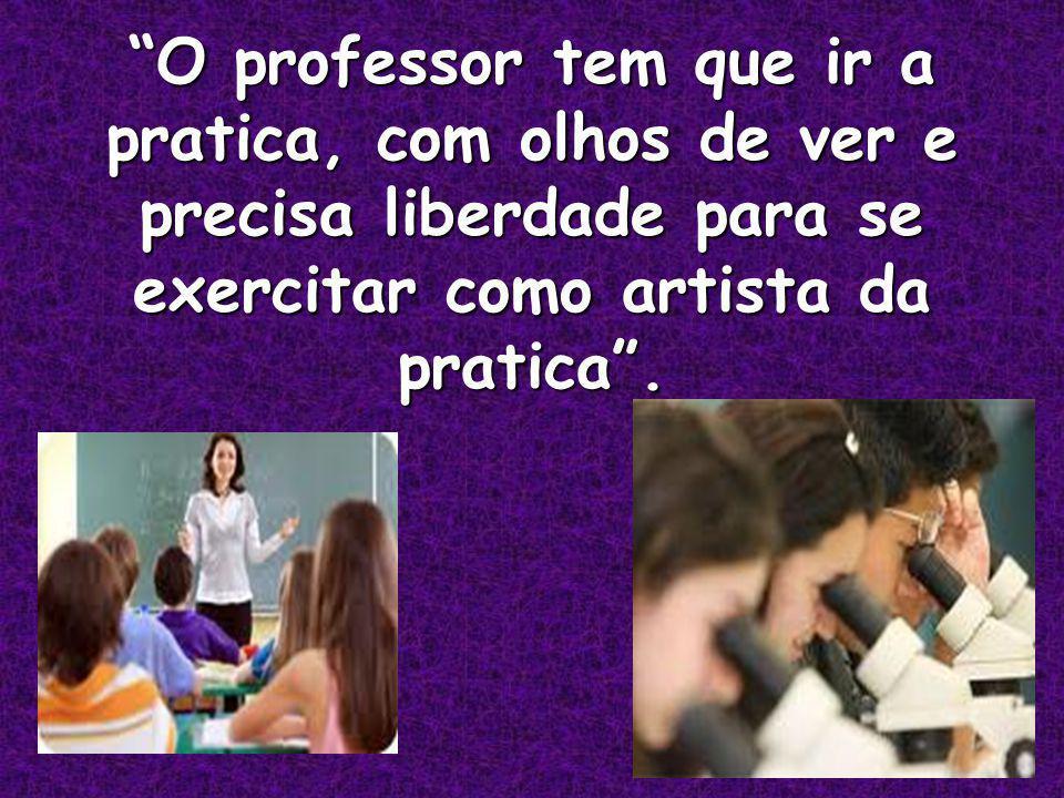 O professor tem que ir a pratica, com olhos de ver e precisa liberdade para se exercitar como artista da pratica.