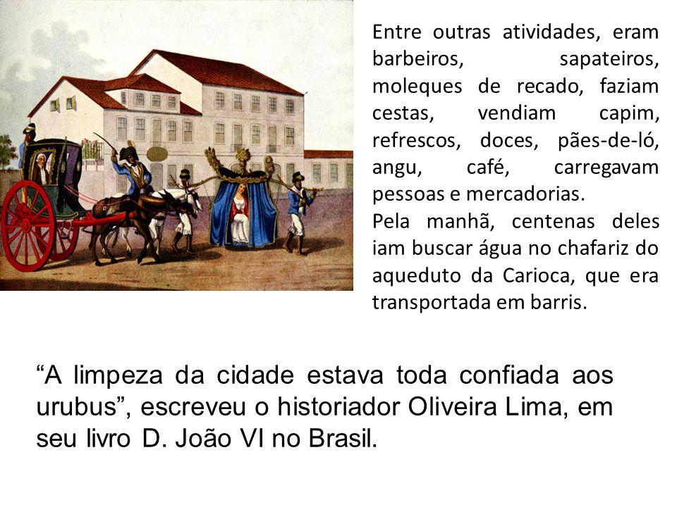 A limpeza da cidade estava toda confiada aos urubus, escreveu o historiador Oliveira Lima, em seu livro D. João VI no Brasil. Entre outras atividades,