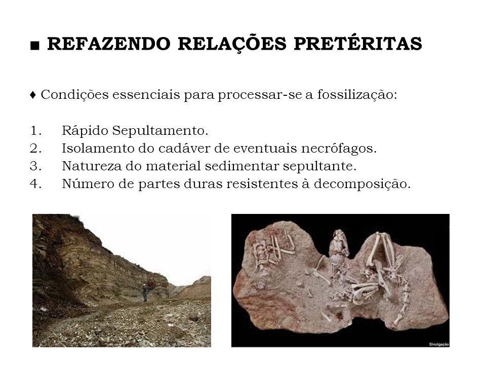 Condições essenciais para processar-se a fossilização: 1.Rápido Sepultamento. 2.Isolamento do cadáver de eventuais necrófagos. 3.Natureza do material