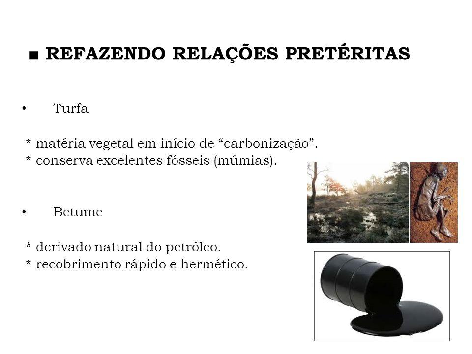 Turfa * matéria vegetal em início de carbonização. * conserva excelentes fósseis (múmias). Betume * derivado natural do petróleo. * recobrimento rápid