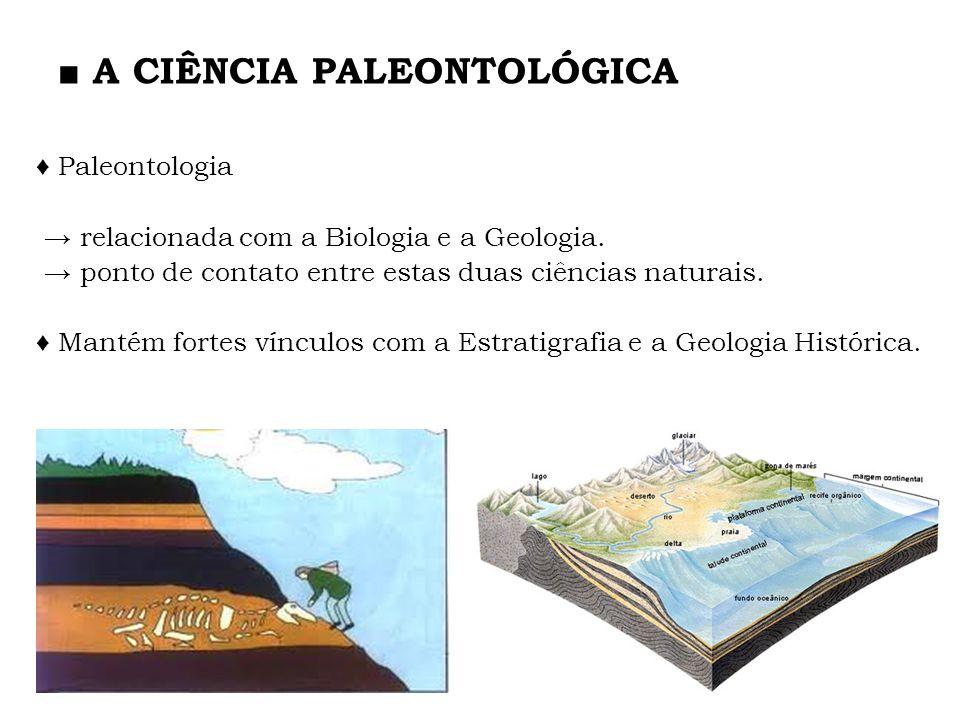 A CIÊNCIA PALEONTOLÓGICA Paleontologia relacionada com a Biologia e a Geologia. ponto de contato entre estas duas ciências naturais. Mantém fortes vín