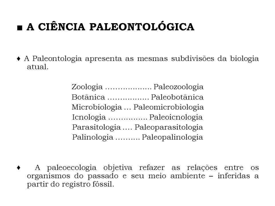 A Paleontologia apresenta as mesmas subdivisões da biologia atual. Zoologia................... Paleozoologia Botânica................. Paleobotânica M