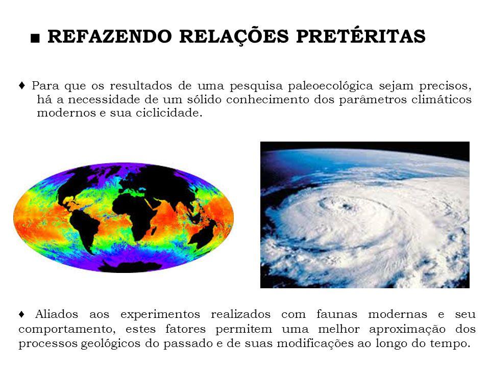 A Paleoecologia se vale das mesmas regras que governam as relações ecológicas modernas.