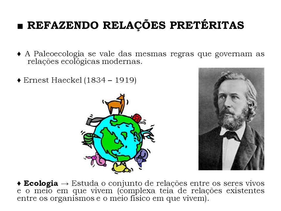 A Paleoecologia se vale das mesmas regras que governam as relações ecológicas modernas. Ernest Haeckel (1834 – 1919) Ecologia Estuda o conjunto de rel