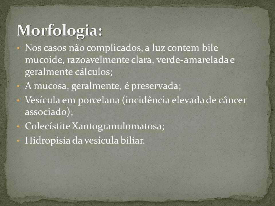 Nos casos não complicados, a luz contem bile mucoide, razoavelmente clara, verde-amarelada e geralmente cálculos; A mucosa, geralmente, é preservada; Vesícula em porcelana (incidência elevada de câncer associado); Colecístite Xantogranulomatosa; Hidropisia da vesícula biliar.