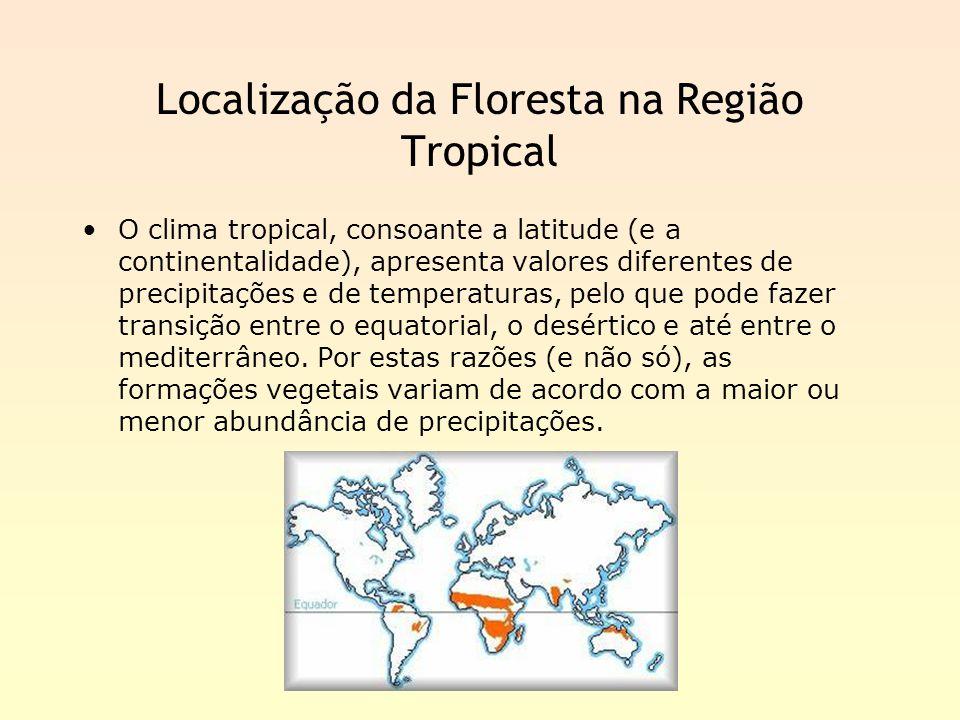 Localização da Floresta na Região Tropical O clima tropical, consoante a latitude (e a continentalidade), apresenta valores diferentes de precipitaçõe