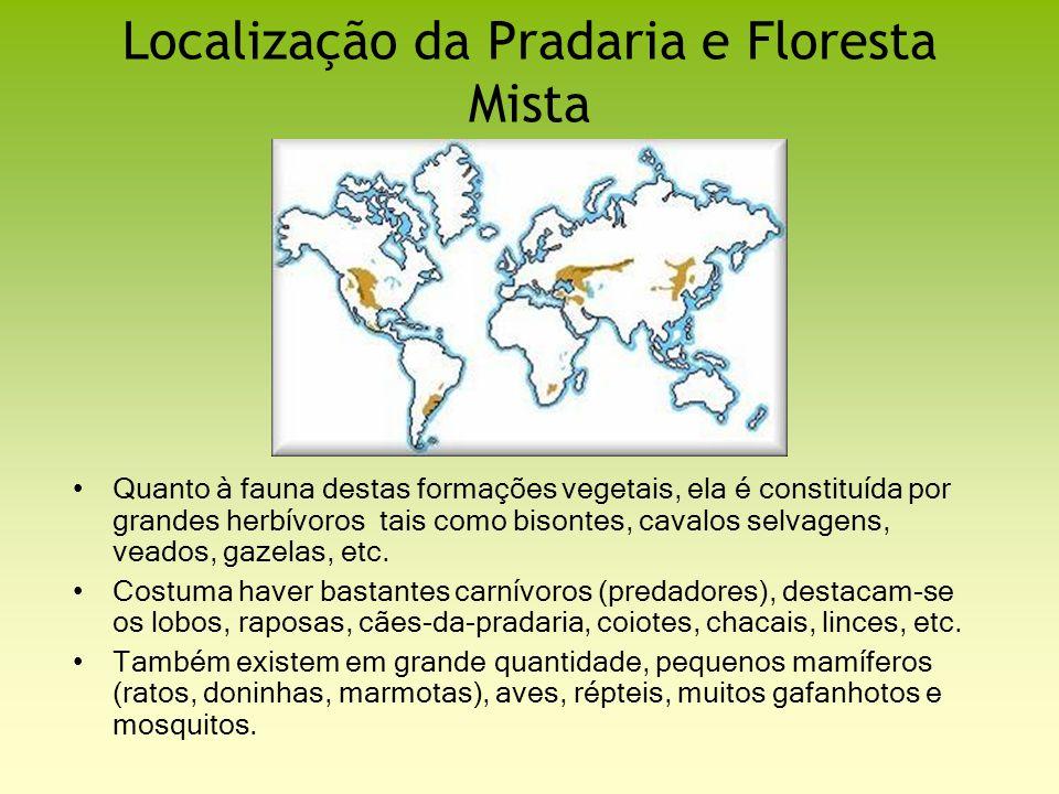 Localização da Pradaria e Floresta Mista Quanto à fauna destas formações vegetais, ela é constituída por grandes herbívoros tais como bisontes, cavalo