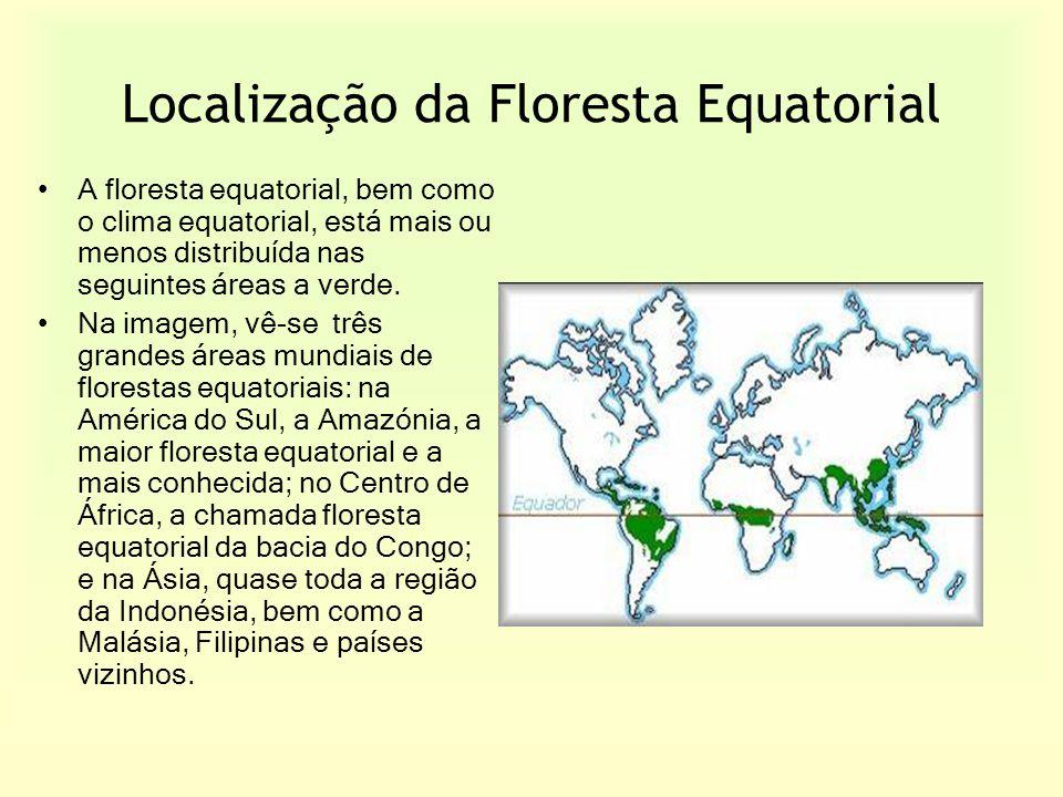 Localização da Floresta Equatorial A floresta equatorial, bem como o clima equatorial, está mais ou menos distribuída nas seguintes áreas a verde. Na