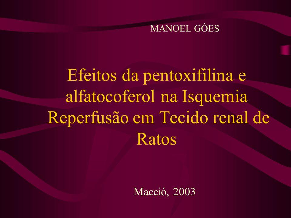 Efeitos da pentoxifilina e alfatocoferol na Isquemia Reperfusão em Tecido renal de Ratos Maceió, 2003 MANOEL GÓES