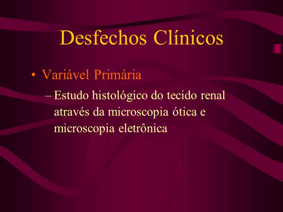 Desfechos Clínicos Variável Primária –Estudo histológico do tecido renal através da microscopia ótica e microscopia eletrônica