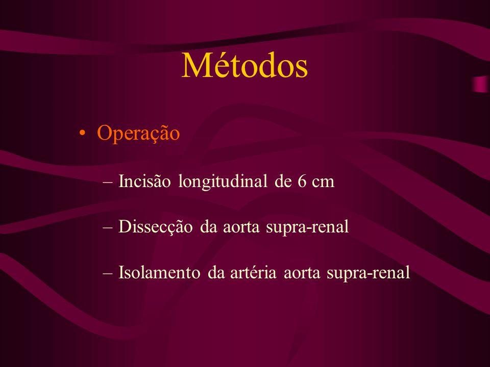 Métodos Operação –Incisão longitudinal de 6 cm –Dissecção da aorta supra-renal –Isolamento da artéria aorta supra-renal